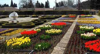 Ботаническа градина до град Балчик